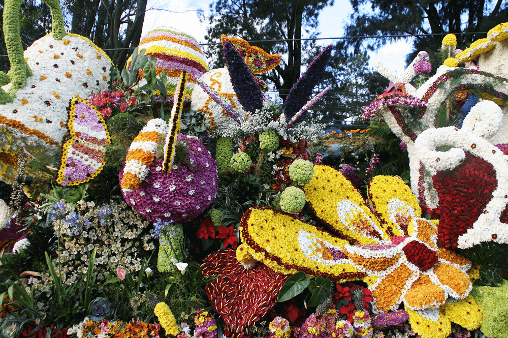 panagbenga festival flower float parade
