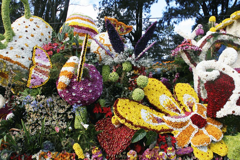 panagbenga festival flower float parade